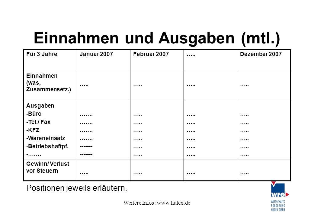 Weitere Infos: www.hafex.de Einnahmen und Ausgaben (mtl.) Für 3 JahreJanuar 2007Februar 2007…..Dezember 2007 Einnahmen (was, Zusammensetz.) ….. Ausgab