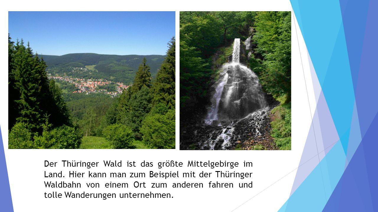 Der Thüringer Wald ist das größte Mittelgebirge im Land.