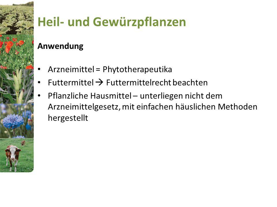 Heil- und Gewürzpflanzen Anwendung Arzneimittel = Phytotherapeutika Futtermittel  Futtermittelrecht beachten Pflanzliche Hausmittel – unterliegen nic