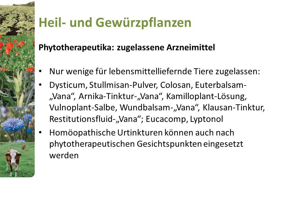 Heil- und Gewürzpflanzen Phytotherapeutika: zugelassene Arzneimittel Nur wenige für lebensmittelliefernde Tiere zugelassen: Dysticum, Stullmisan-Pulve
