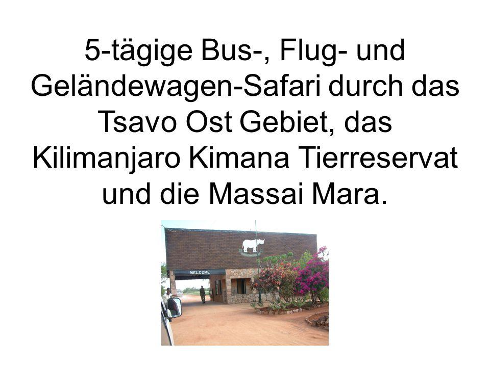 5-tägige Bus-, Flug- und Geländewagen-Safari durch das Tsavo Ost Gebiet, das Kilimanjaro Kimana Tierreservat und die Massai Mara.