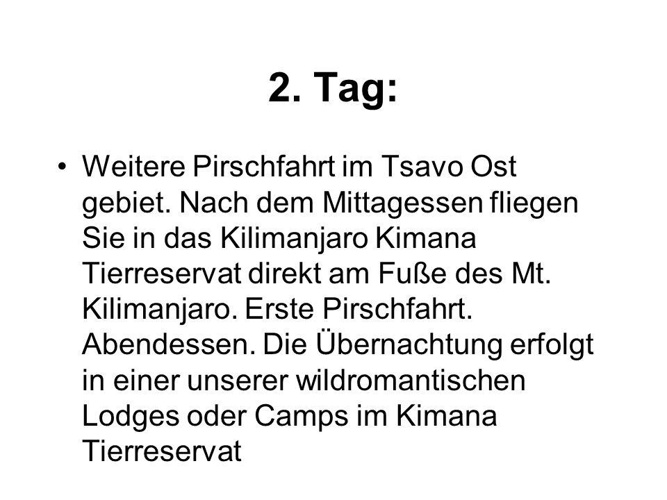 2. Tag: Weitere Pirschfahrt im Tsavo Ost gebiet.