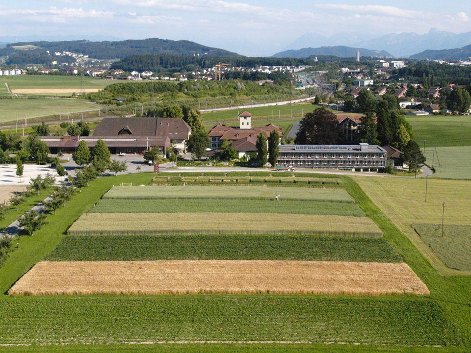13 Düngung im Oberacker – Nutzen von Bodenanalysen René Flisch, Agroscope – Institut für Nachhaltigkeitswissenschaften (INH)