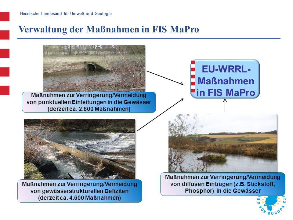 Hessische Landesamt für Umwelt und Geologie EU-WRRL- Maßnahmen in FIS MaPro Maßnahmen zur Verringerung/Vermeidung von gewässerstrukturellen Defiziten