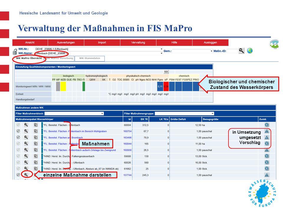 Hessische Landesamt für Umwelt und Geologie Verwaltung der Maßnahmen in FIS MaPro Maßnahmen einzelne Maßnahme darstellen Biologischer und chemischer Z