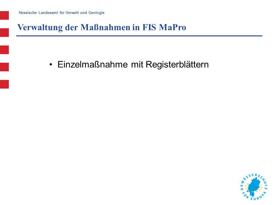 Hessische Landesamt für Umwelt und Geologie Verwaltung der Maßnahmen in FIS MaPro Einzelmaßnahme mit Registerblättern