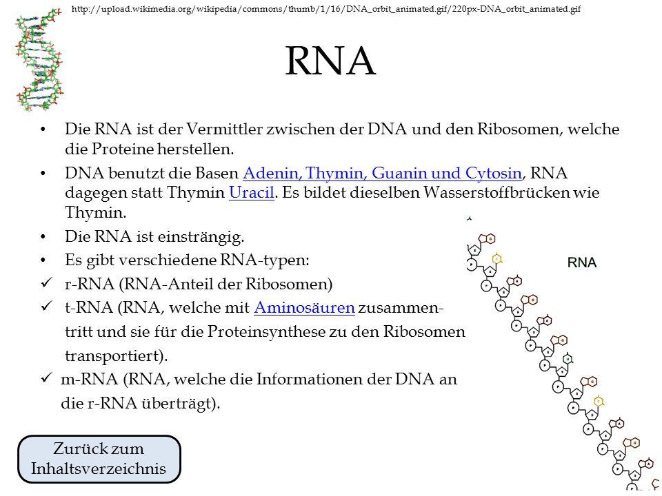 http://upload.wikimedia.org/wikipedia/commons/thumb/1/16/DNA_orbit_animated.gif/220px-DNA_orbit_animated.gif Chromosomen und Chromatin Chromosomen sind Strukturen, die die Gene enthalten.