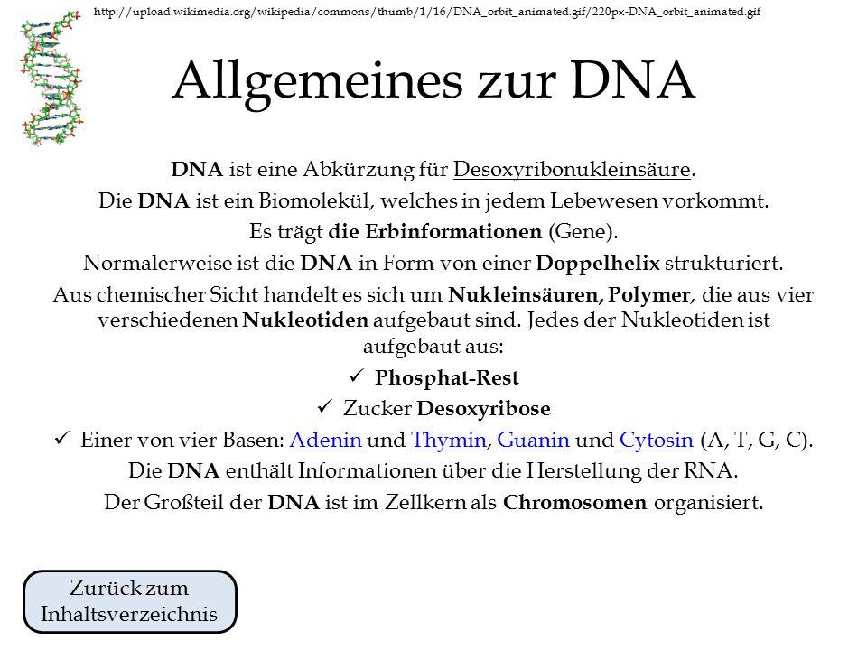 http://upload.wikimedia.org/wikipedia/commons/thumb/1/16/DNA_orbit_animated.gif/220px-DNA_orbit_animated.gif Inhaltsverzeichnis Von Beginn an.