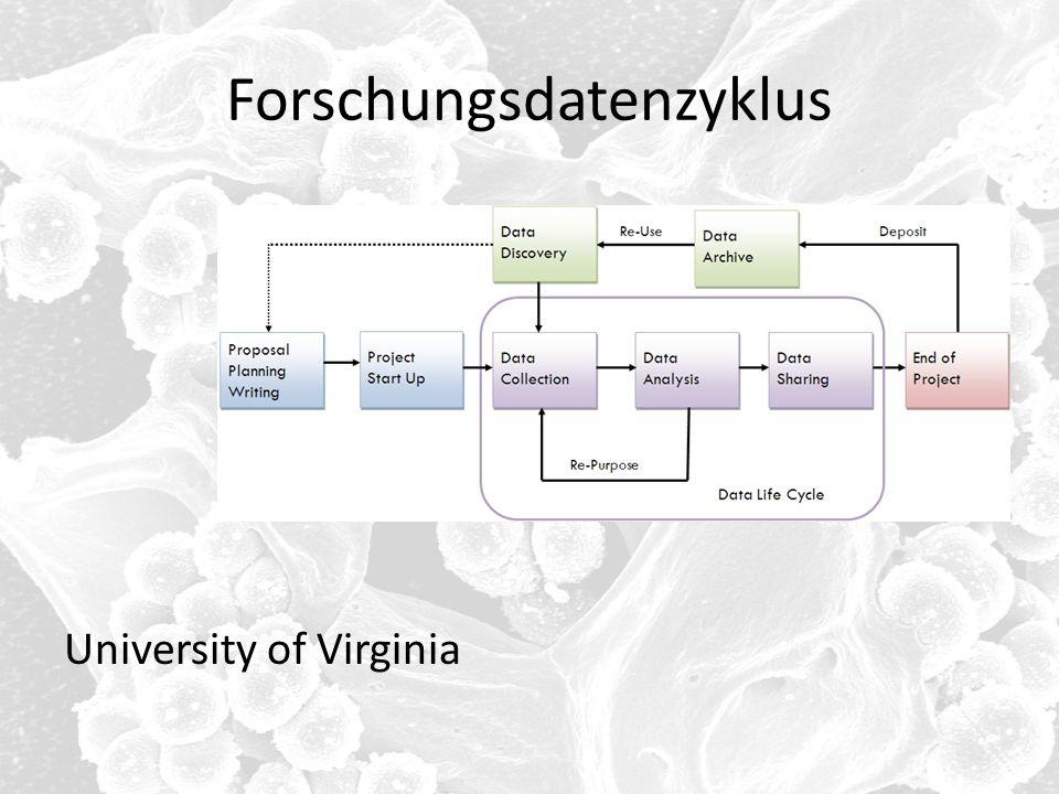 Forschungsdatenzyklus University of Virginia