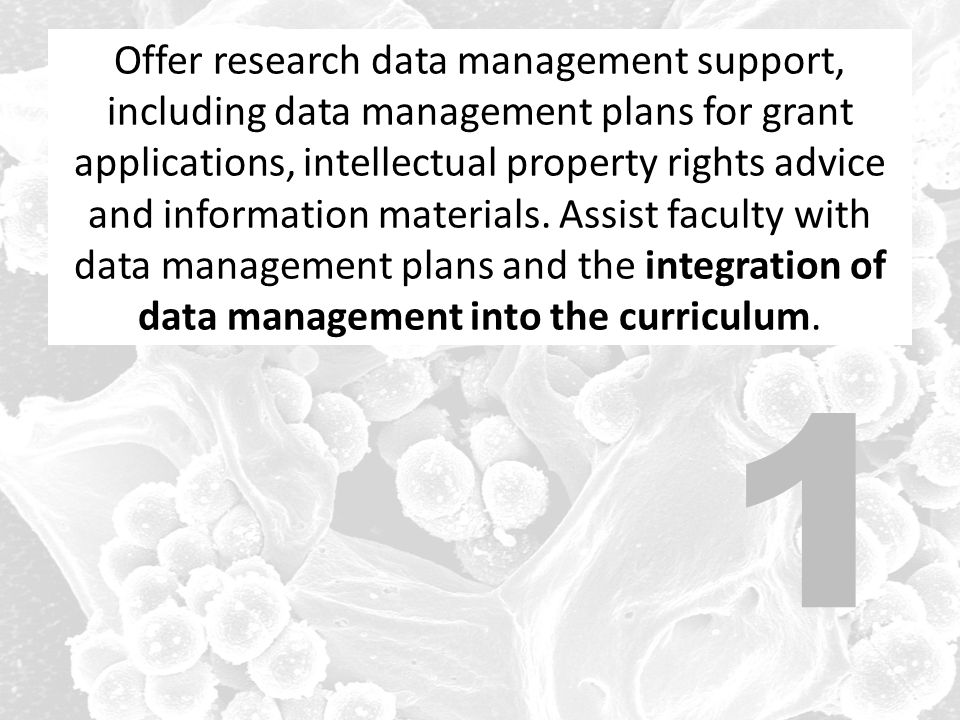 1 Offer research data management support, including data management plans for grant applications, intellectual property rights advice and information materials.