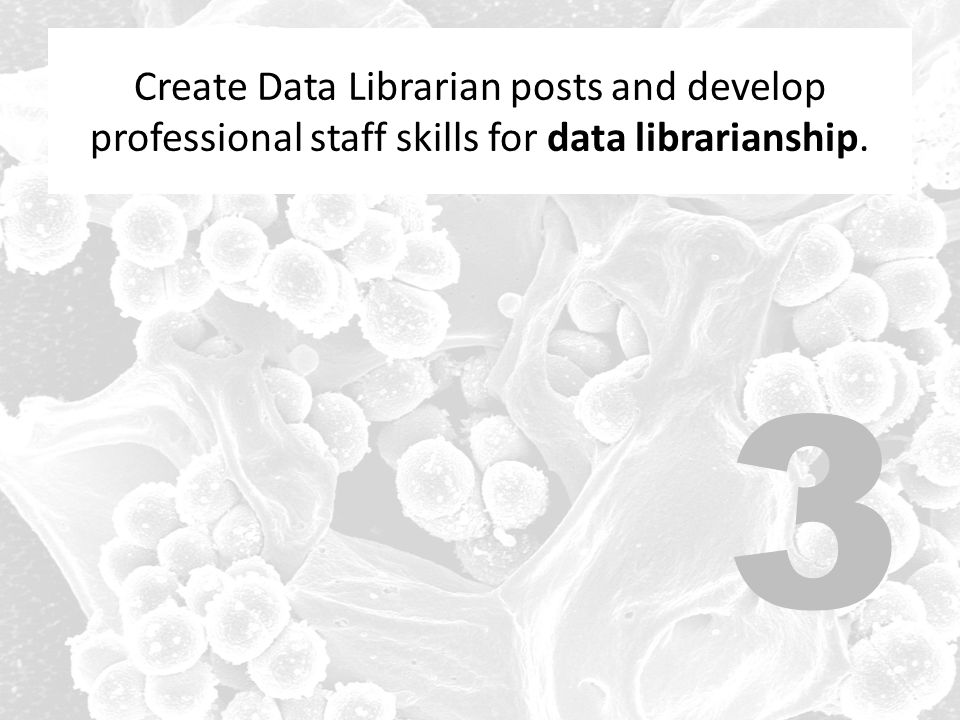 Create Data Librarian posts and develop professional staff skills for data librarianship. 3