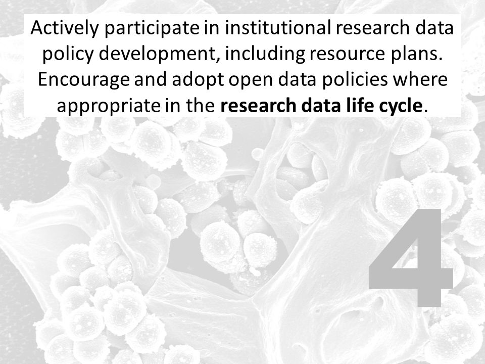 Actively participate in institutional research data policy development, including resource plans.