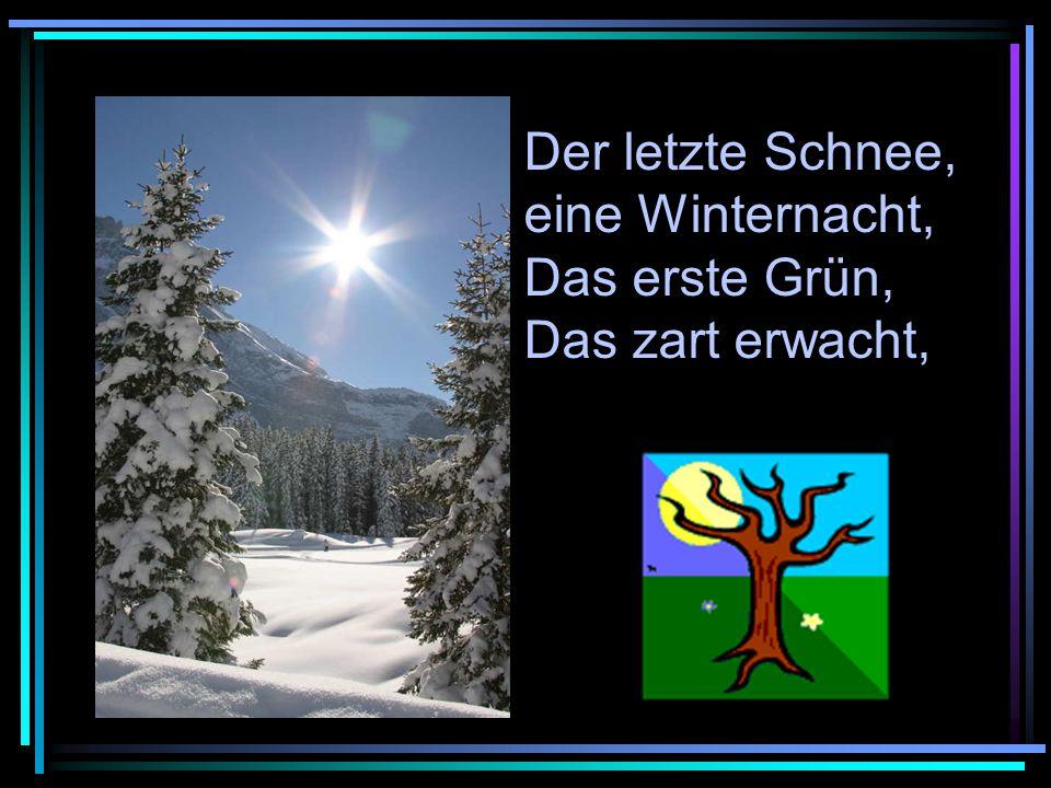 Der letzte Schnee, eine Winternacht, Das erste Grün, Das zart erwacht,