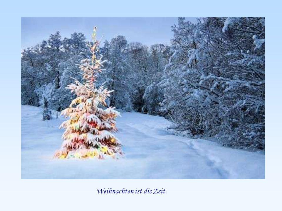 Liebe Wünsche zur Weihnachtszeit Die Flippers - Süßer die Glocken nie klingen läuft automatisch - Musik: Die Flippers - Süßer die Glocken nie klingen