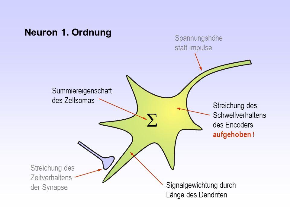 Neuron 1. Ordnung Spannungshöhe statt Impulse Streichung des Zeitverhaltens der Synapse  Streichung des Schwellverhaltens des Encoders aufgehoben ! 