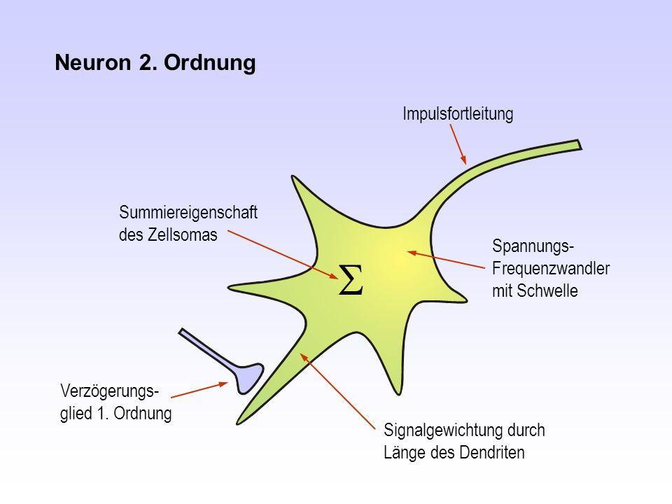 Neuron 2. Ordnung Impulsfortleitung Spannungs- Frequenzwandler mit Schwelle Verzögerungs- glied 1. Ordnung  Summiereigenschaft des Zellsomas Signalge