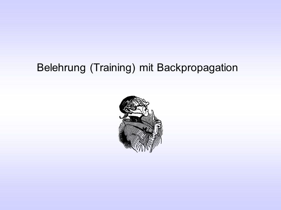 Belehrung (Training) mit Backpropagation
