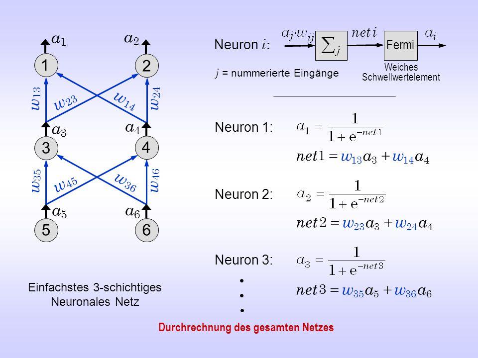Neuron 1: Neuron 3: Neuron 2: Neuron i : Fermi net i 414313 1 awawnet  424323 2 awawnet  636535 3 awawnet  w 46 a5a5 w 24 w 35 a2a2 a3a3 a1a1 w