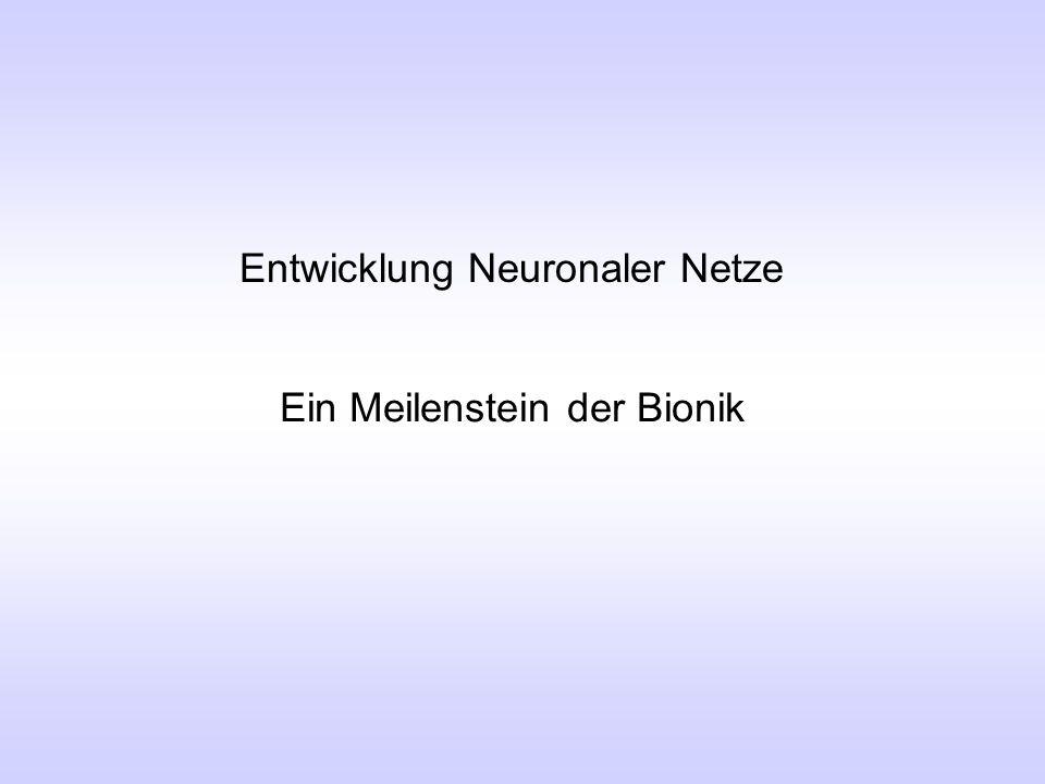 Entwicklung Neuronaler Netze Ein Meilenstein der Bionik