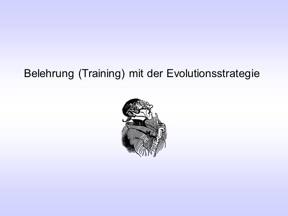 Belehrung (Training) mit der Evolutionsstrategie
