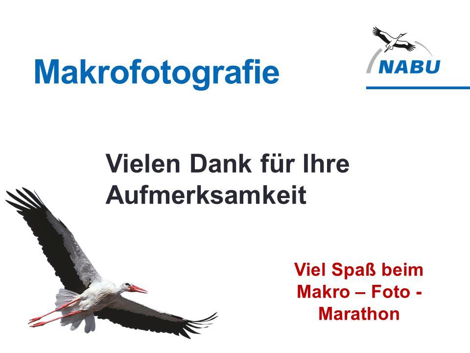 Makrofotografie Viel Spaß beim Makro – Foto - Marathon Vielen Dank für Ihre Aufmerksamkeit