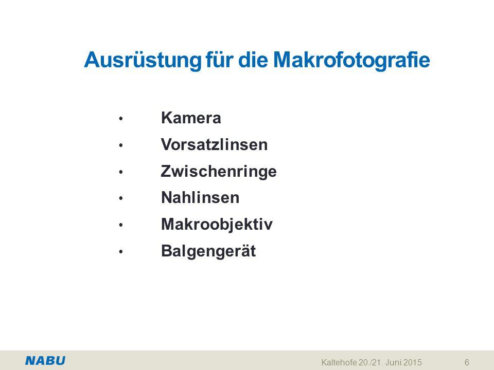 Kaltehofe 20./21.