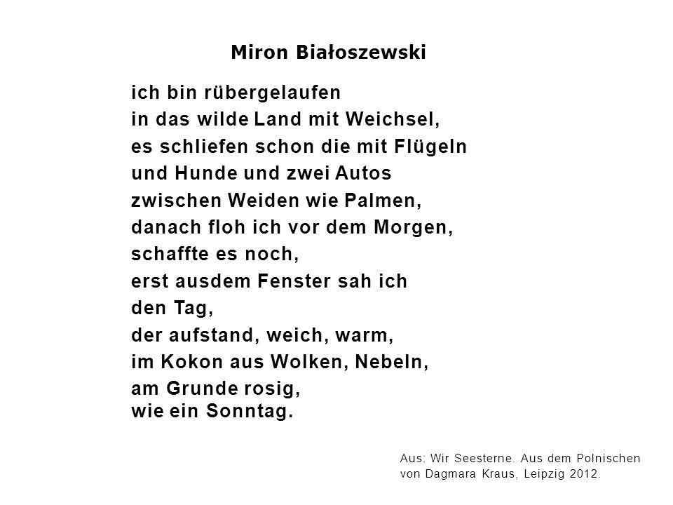 Miron Białoszewski ich bin rübergelaufen in das wilde Land mit Weichsel, es schliefen schon die mit Flügeln und Hunde und zwei Autos zwischen Weiden w