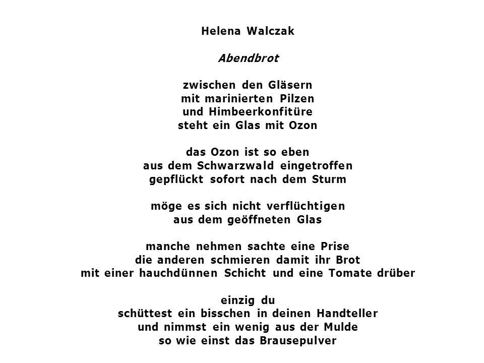 Helena Walczak Abendbrot zwischen den Gläsern mit marinierten Pilzen und Himbeerkonfitüre steht ein Glas mit Ozon das Ozon ist so eben aus dem Schwarz