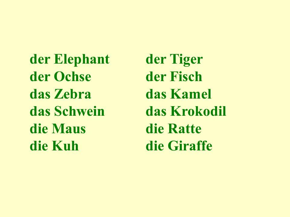 der Elephantder Tiger der Ochseder Fisch das Zebradas Kamel das Schwein das Krokodil die Mausdie Ratte die Kuh die Giraffe