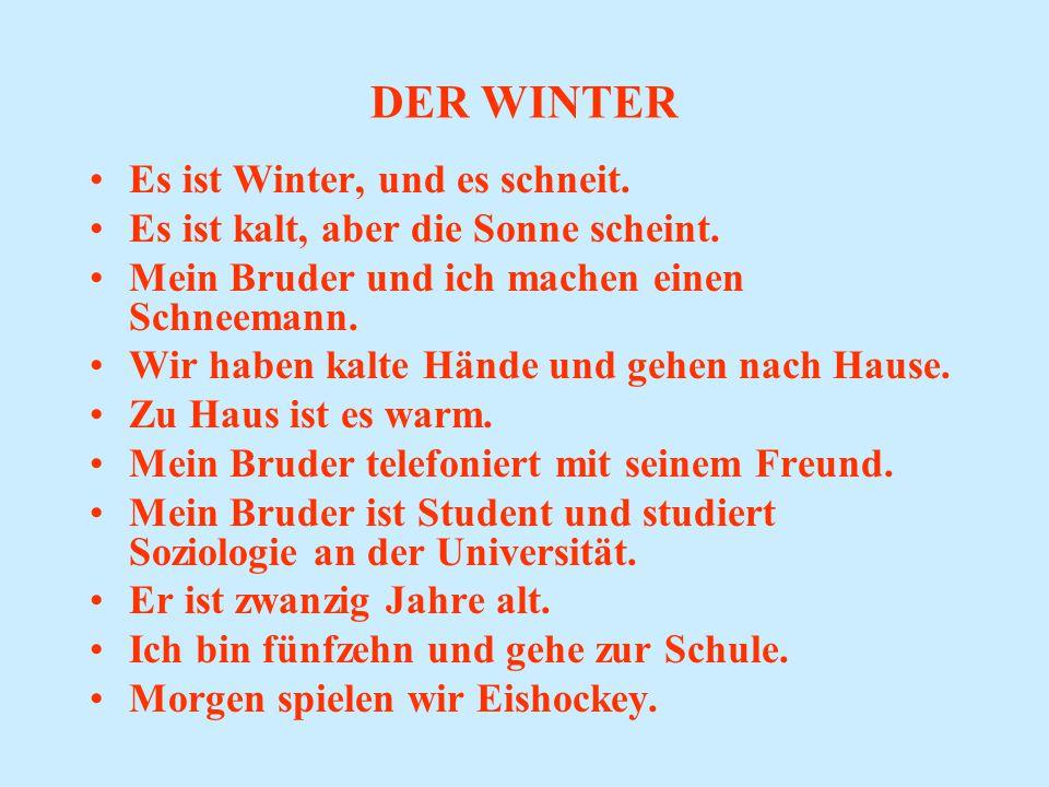 DER WINTER Es ist Winter, und es schneit.Es ist kalt, aber die Sonne scheint.