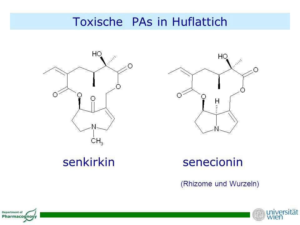 Toxische PAs in Huflattich senkirkin senecionin (Rhizome und Wurzeln)