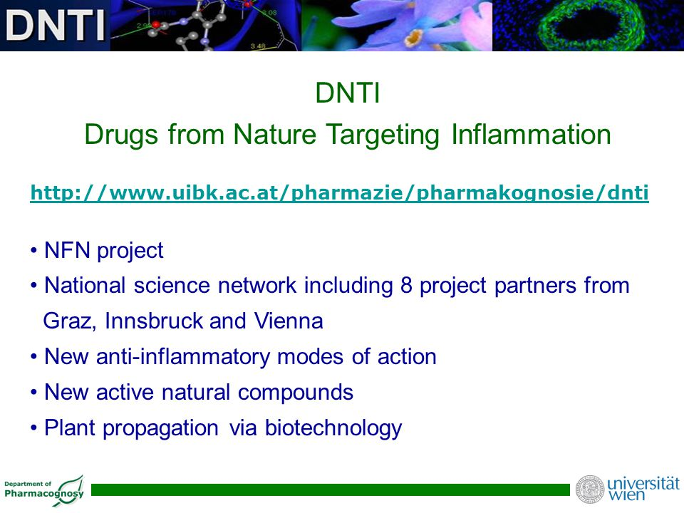 DNTI Drugs from Nature Targeting Inflammation http://www.uibk.ac.at/pharmazie/pharmakognosie/dnti NFN project National science network including 8 pro