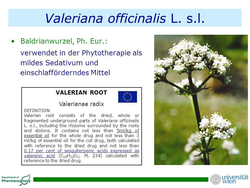 Valeriana officinalis L. s.l. Baldrianwurzel, Ph. Eur.: verwendet in der Phytotherapie als mildes Sedativum und einschlafförderndes Mittel VALERIAN RO