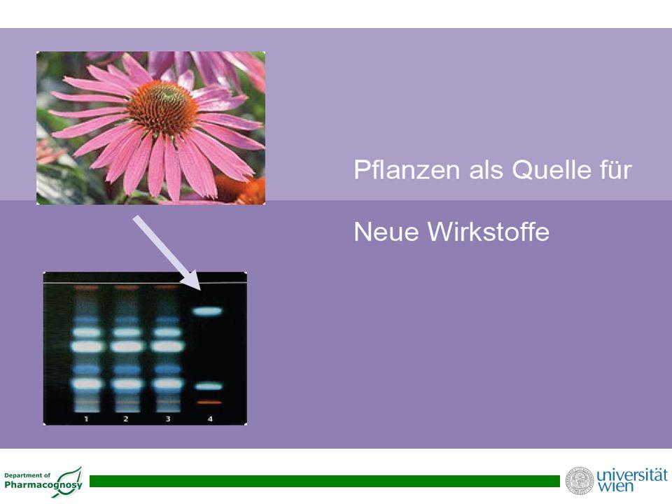 Das richtige Netzwerk zur Entwicklung von rationalen pflanzlichen Arzneimitteln