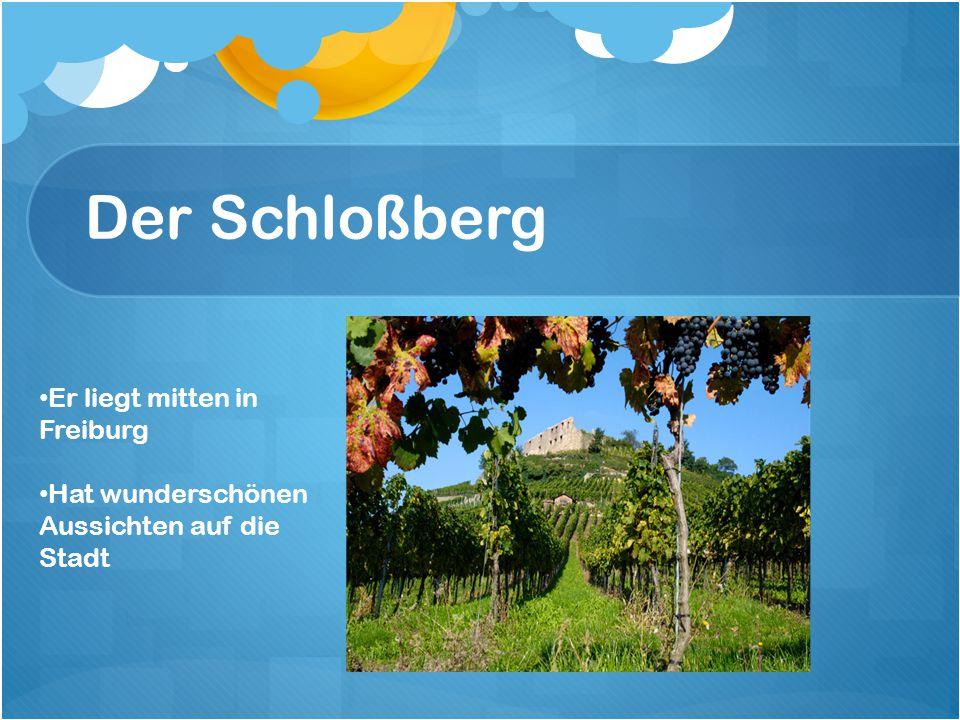 Der Schloßberg Er liegt mitten in Freiburg Hat wunderschönen Aussichten auf die Stadt