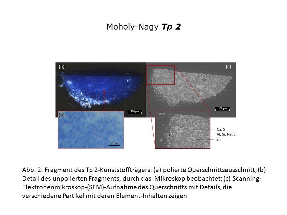 Moholy-Nagy Tp 2 Abb. 2: Fragment des Tp 2-Kunststoffträgers: (a) polierte Querschnittsausschnitt; (b) Detail des unpolierten Fragments, durch das Mik