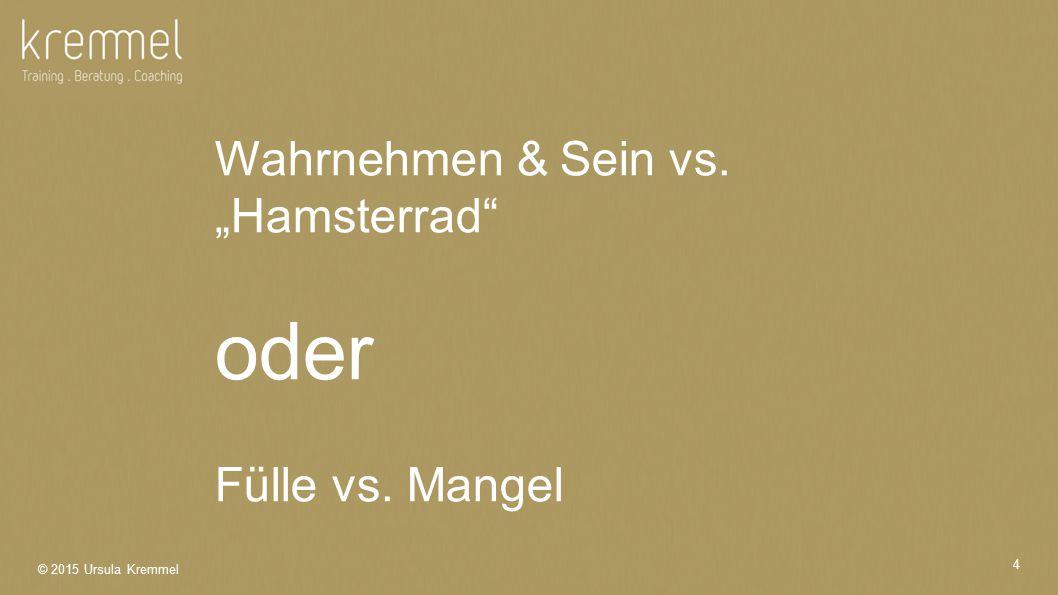 "4 Wahrnehmen & Sein vs. ""Hamsterrad oder Fülle vs. Mangel"