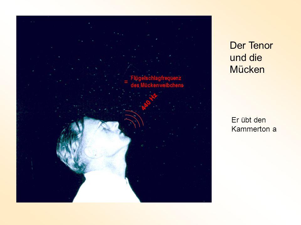 Egbert de Boer (1980) Mechanisches Cochlea-Modell Angekoppelte Flüssigkeit Federn Massen + Dämpfung Steigbügel Hohe Steifigkeit Niedrige Steifigkeit