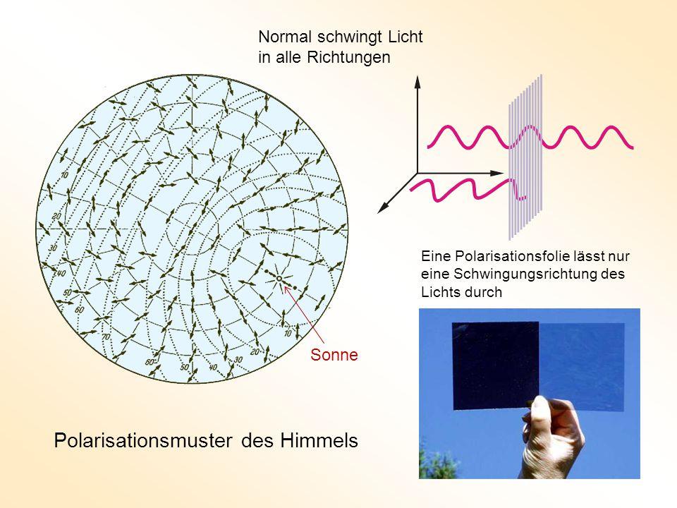Polarisationsmuster des Himmels Eine Polarisationsfolie lässt nur eine Schwingungsrichtung des Lichts durch Normal schwingt Licht in alle Richtungen Sonne