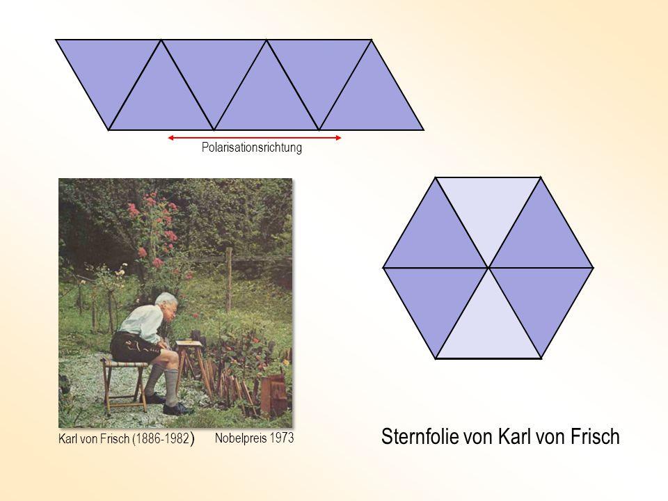 Sternfolie von Karl von Frisch Polarisationsrichtung Karl von Frisch (1886-1982 ) Nobelpreis 1973