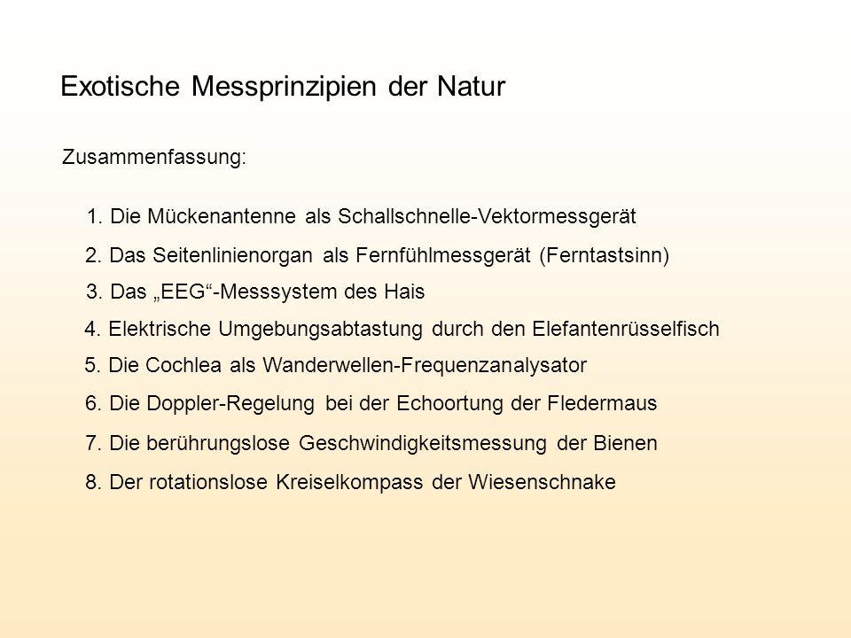 Exotische Messprinzipien der Natur Zusammenfassung: 1.