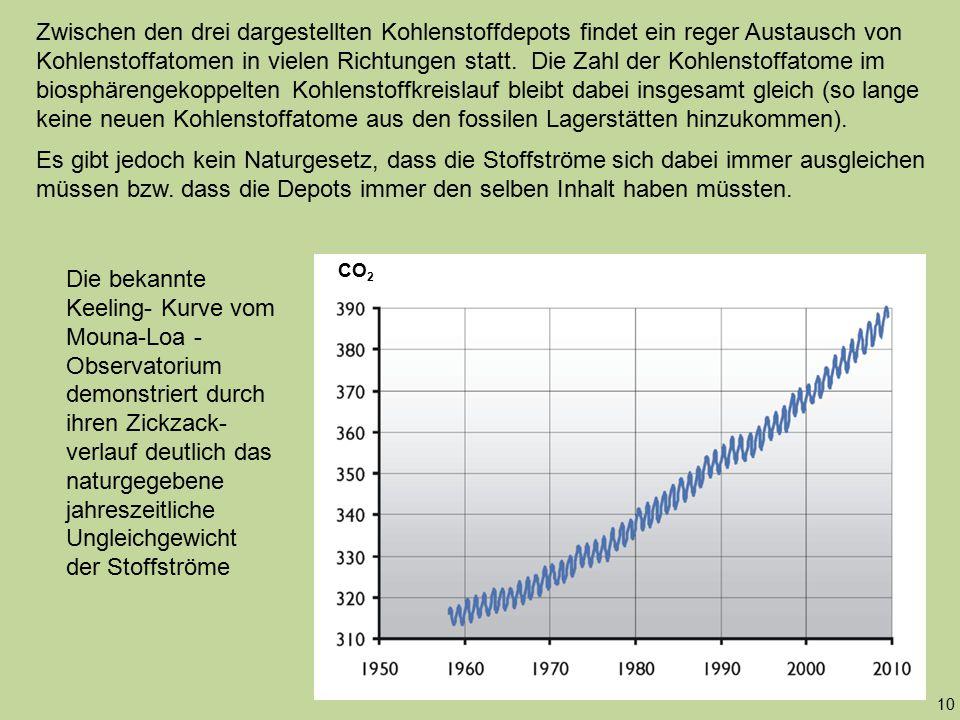 Zwischen den drei dargestellten Kohlenstoffdepots findet ein reger Austausch von Kohlenstoffatomen in vielen Richtungen statt. Die Zahl der Kohlenstof