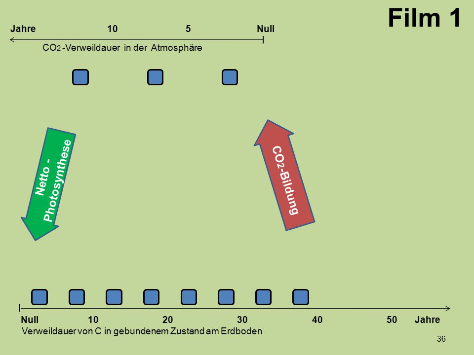 1020304050 Jahre Verweildauer von C in gebundenem Zustand am Erdboden CO 2 -Verweildauer in der Atmosphäre Null 10Null5Jahre Film 1 Netto - Photosynth