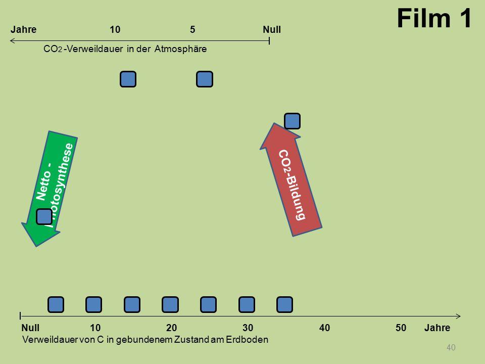 Netto - Photosynthese CO 2 -Bildung 40 1020304050 Jahre Verweildauer von C in gebundenem Zustand am Erdboden CO 2 -Verweildauer in der Atmosphäre Null