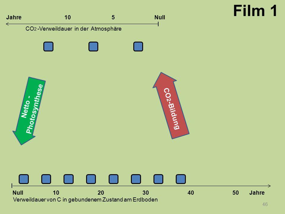 46 1020304050 Jahre Verweildauer von C in gebundenem Zustand am Erdboden CO 2 -Verweildauer in der Atmosphäre Null 10Null5Jahre Film 1 Netto - Photosy