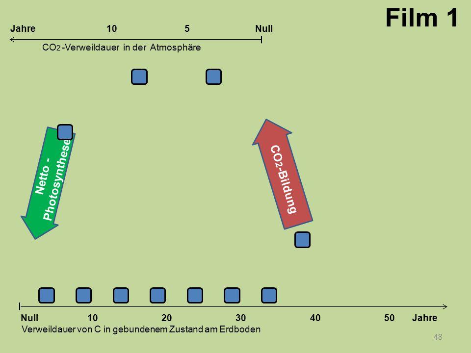 Netto - Photosynthese CO 2 -Bildung 48 1020304050 Jahre Verweildauer von C in gebundenem Zustand am Erdboden CO 2 -Verweildauer in der Atmosphäre Null