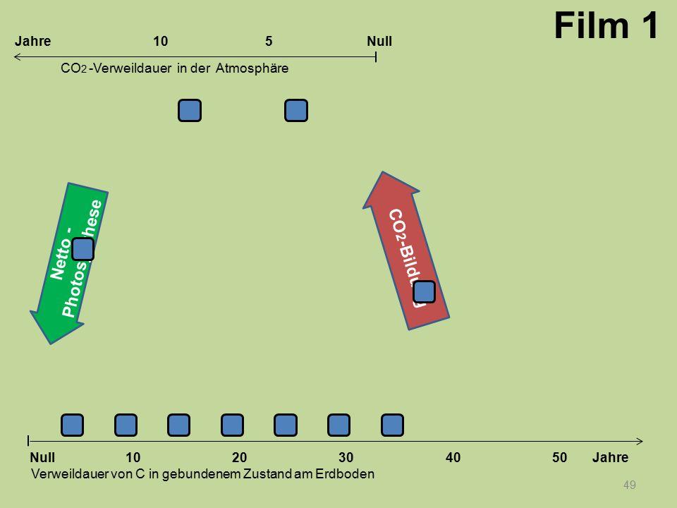 Netto - Photosynthese CO 2 -Bildung 49 1020304050 Jahre Verweildauer von C in gebundenem Zustand am Erdboden CO 2 -Verweildauer in der Atmosphäre Null