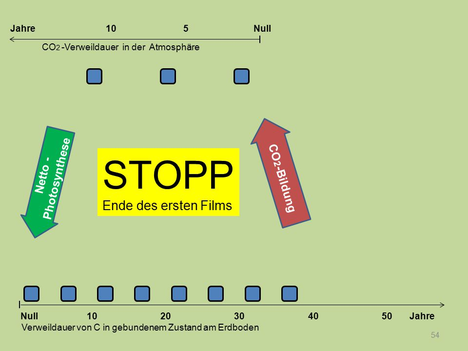 54 STOPP Ende des ersten Films Netto - Photosynthese 1020304050 Jahre Verweildauer von C in gebundenem Zustand am Erdboden CO 2 -Verweildauer in der A
