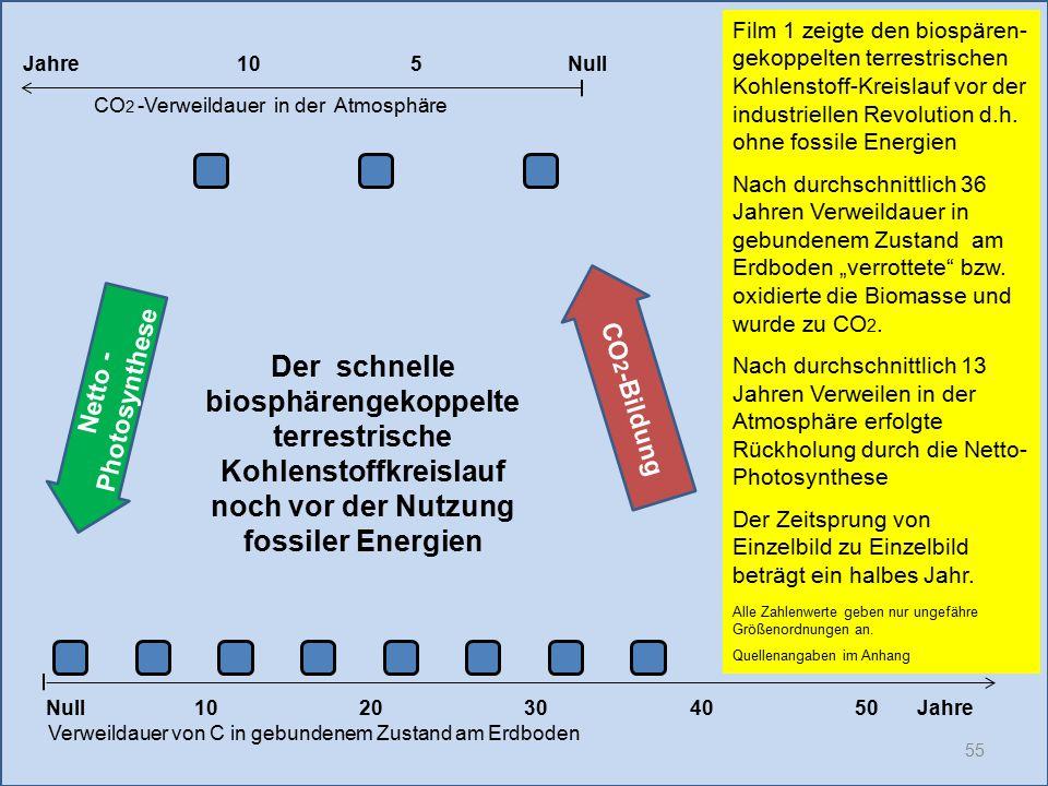 55 1020304050 Jahre Verweildauer von C in gebundenem Zustand am Erdboden CO 2 -Verweildauer in der Atmosphäre Film 1 zeigte den biospären- gekoppelten