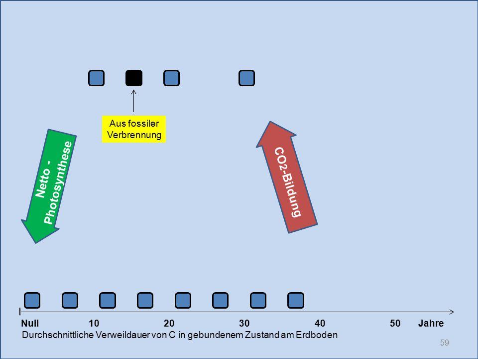 59 1020304050 Jahre Durchschnittliche Verweildauer von C in gebundenem Zustand am Erdboden CO 2 -Bildung Null Netto - Photosynthese Aus fossiler Verbr